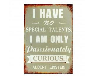 obrázek Plechová retro cedule Einstein
