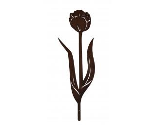 obrázek zápich tulipán