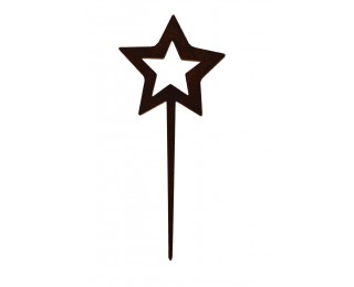 obrázek vánoční zápich hvězda